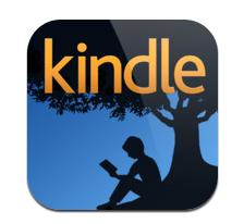 iPadminiでキンドル電子辞書