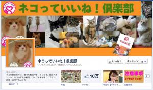 ネコの画像 フェイスブック