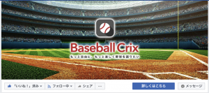 BaseballCrix