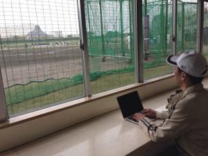 沖縄県プロ野球キャンプSNS