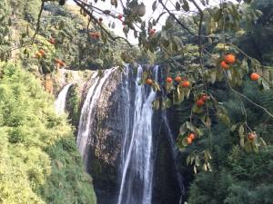 風景画像を加工するiPhoneアプリ
